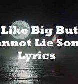 I Like Big Buts Cannot Lie Song Lyrics
