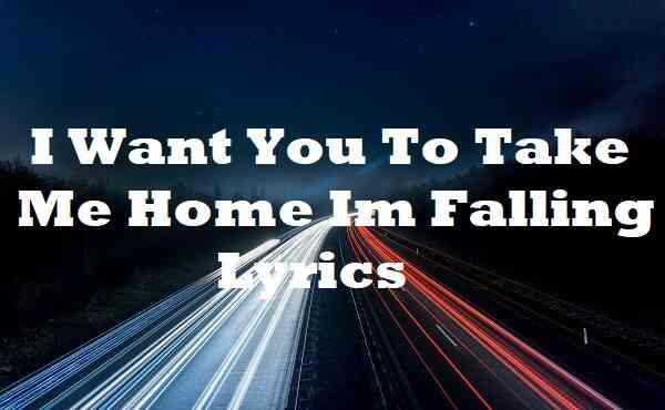 I Want You To Take Me Home Im Falling Lyrics