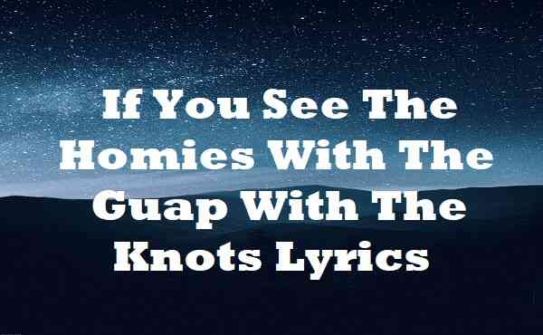 If You See The Homies With The Guap With The Knots Lyrics