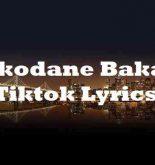 Ikodane Baka Tiktok Lyrics