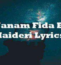 Janam Fida E Haideri Lyrics