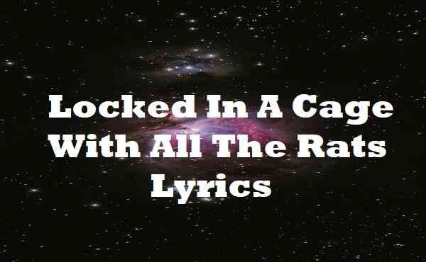 Locked In A Cage With All The Rats Lyrics