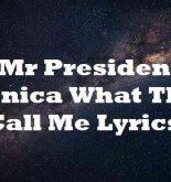 Mr President Monica What They Call Me Lyrics