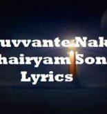 Nuvvante Naku Dhairyam Song Lyrics