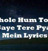 O Bhole Hum To Lut Gaye Tere Pyar Mein Lyrics