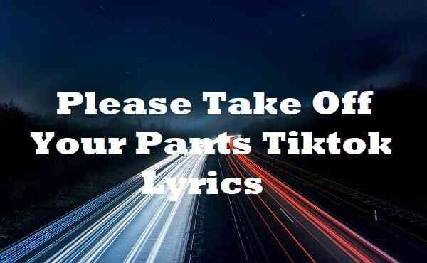 Please Take Off Your Pants Tiktok Lyrics