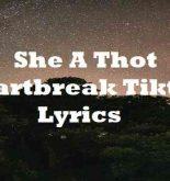 She A Thot Heartbreak Tiktok Lyrics