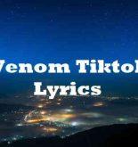 Venom Tiktok Lyrics