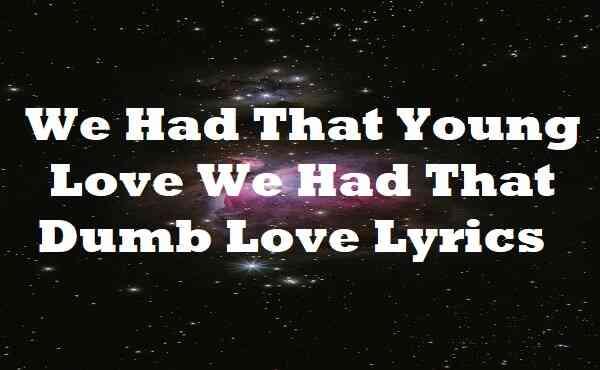 We Had That Young Love We Had That Dumb Love Lyrics