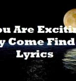 You Are Exciting Boy Come Find Me Lyrics