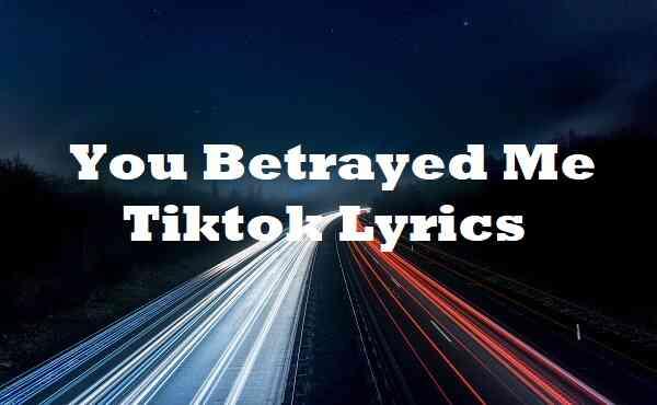 You Betrayed Me Tiktok Lyrics
