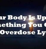 Your Body Is Up To Something You Give Me Overdose Lyrics