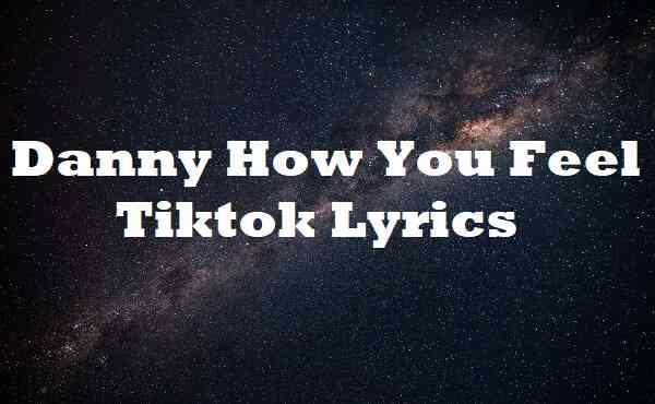 Danny How You Feel Tiktok Lyrics