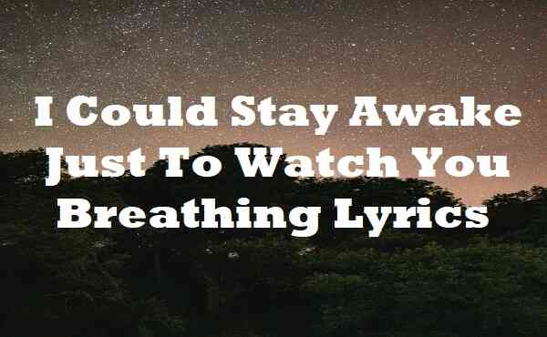 I Could Stay Awake Just To Watch You Breathing Lyrics
