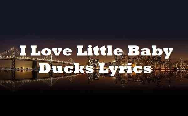 I Love Little Baby Ducks Lyrics