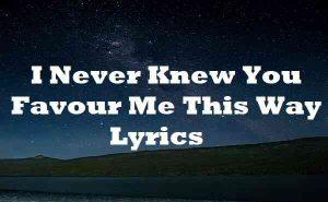 I Never Knew You Favour Me This Way Lyrics