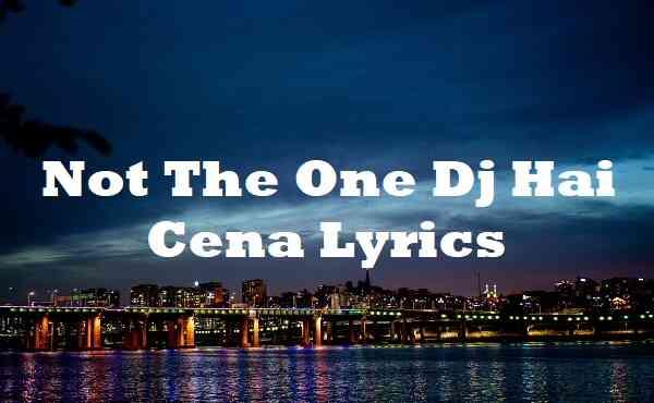 Not The One Dj Hai Cena Lyrics