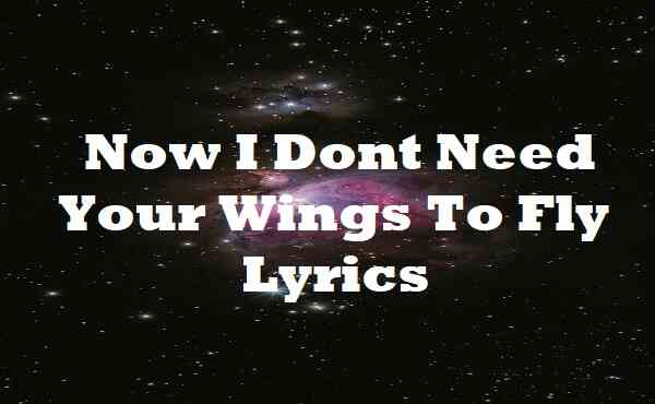 Now I Dont Need Your Wings To Fly Lyrics