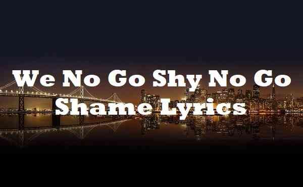 We No Go Shy No Go Shame Lyrics