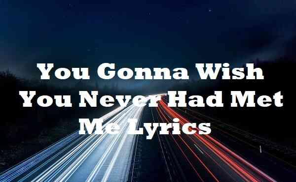 You Gonna Wish You Never Had Met Me Lyrics