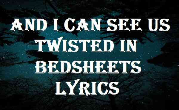 And I Can See Us Twisted in Bedsheets Lyrics