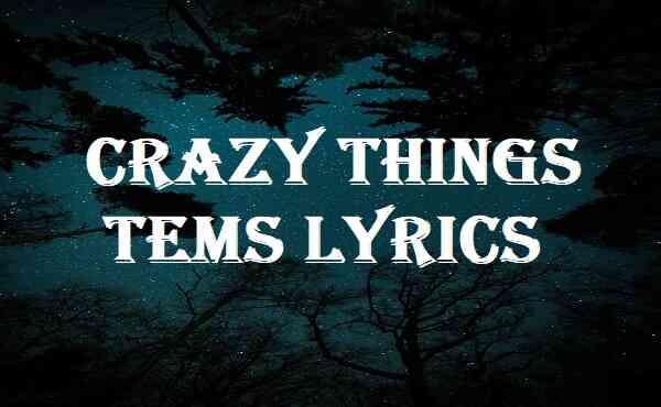 Crazy Things Tems Lyrics