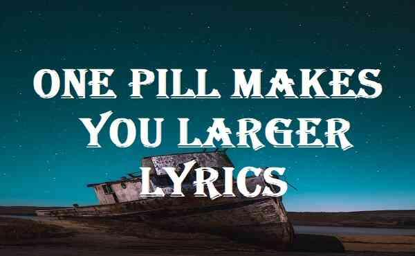 One Pill Makes You Larger Lyrics