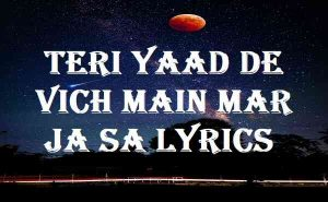 Teri Yaad De Vich Main Mar Ja Sa Lyrics