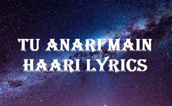 Tu Anari Main Haari Lyrics