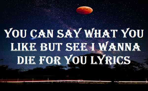 You Can Say What You Like But See I Wanna Die For You lyrics