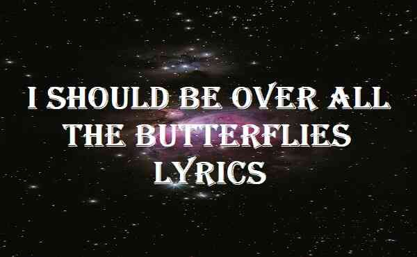 I Should Be Over All The Butterflies Lyrics