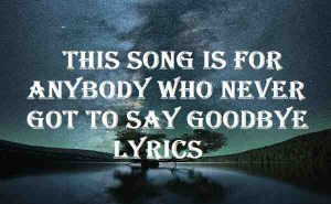 This Song Is For Anybody Who Never Got To Say Goodbye Lyrics